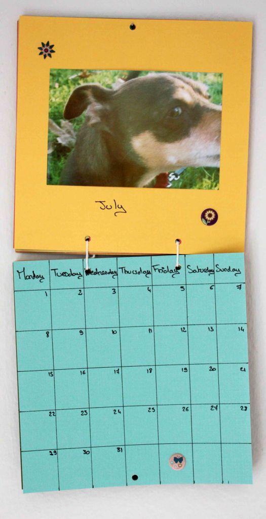 Calendare 10
